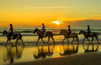 Atlantic Club Montalivet Beach Horseriding