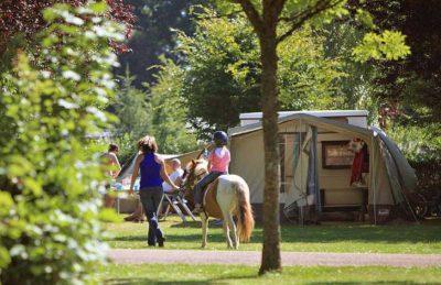 Camping de l'Etang de Fouche Riding