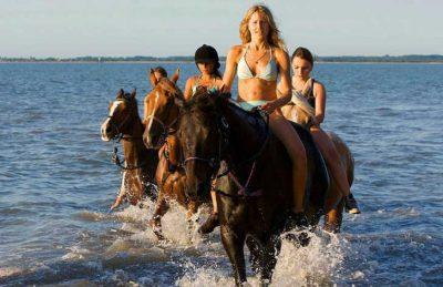 Camping la Pignade Horse Riding