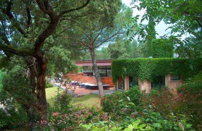 Campsite Le Plein Air de Chenes Parc Setting
