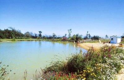 Campsite Port'land Pitch Only Parc Lake