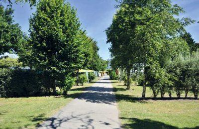 La Pointe St Gilles Campsite Pitch