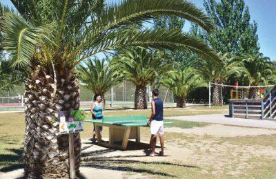 Les Tropiques Table Tennis