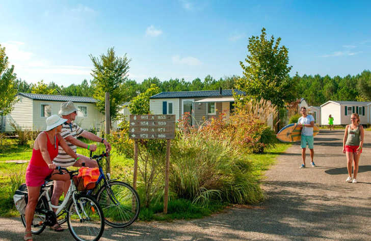 Camping les Vignes Cycle Hire