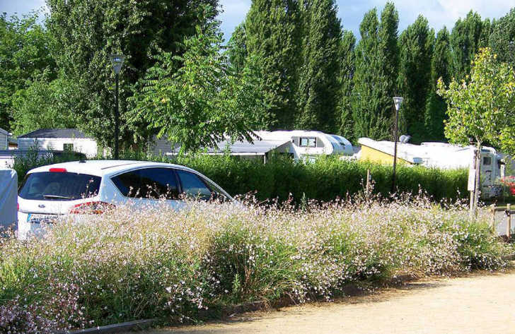 Camping Maisons Laffitte Campsite Pitch