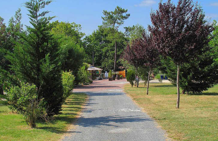 Pitch Only campsites in Gironde, France