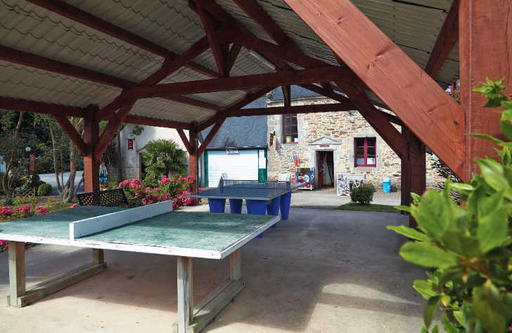 Chateau de Galinee Table Tennis